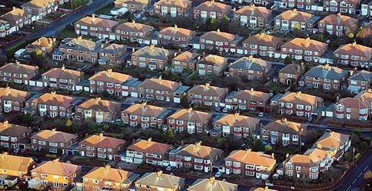 Domestic Pest Control Liverpool
