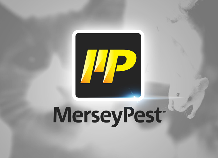 Pest Control Liverpool Main