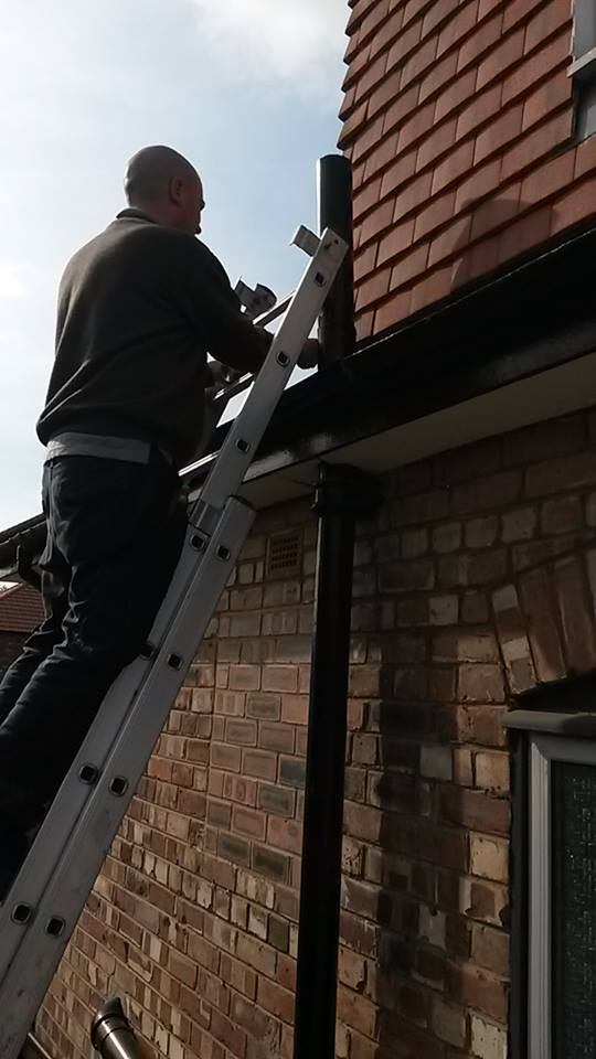 Squirrel Ingress Point Pest Control Liverpool , Wirral, Warrington and Chester