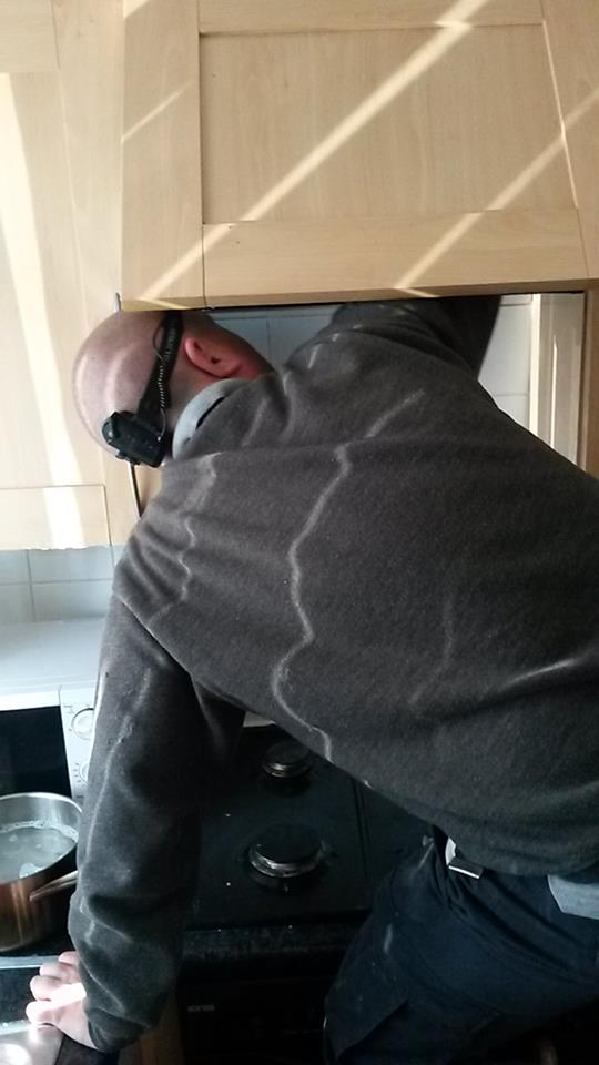 fruitfly clean pest control liverpool