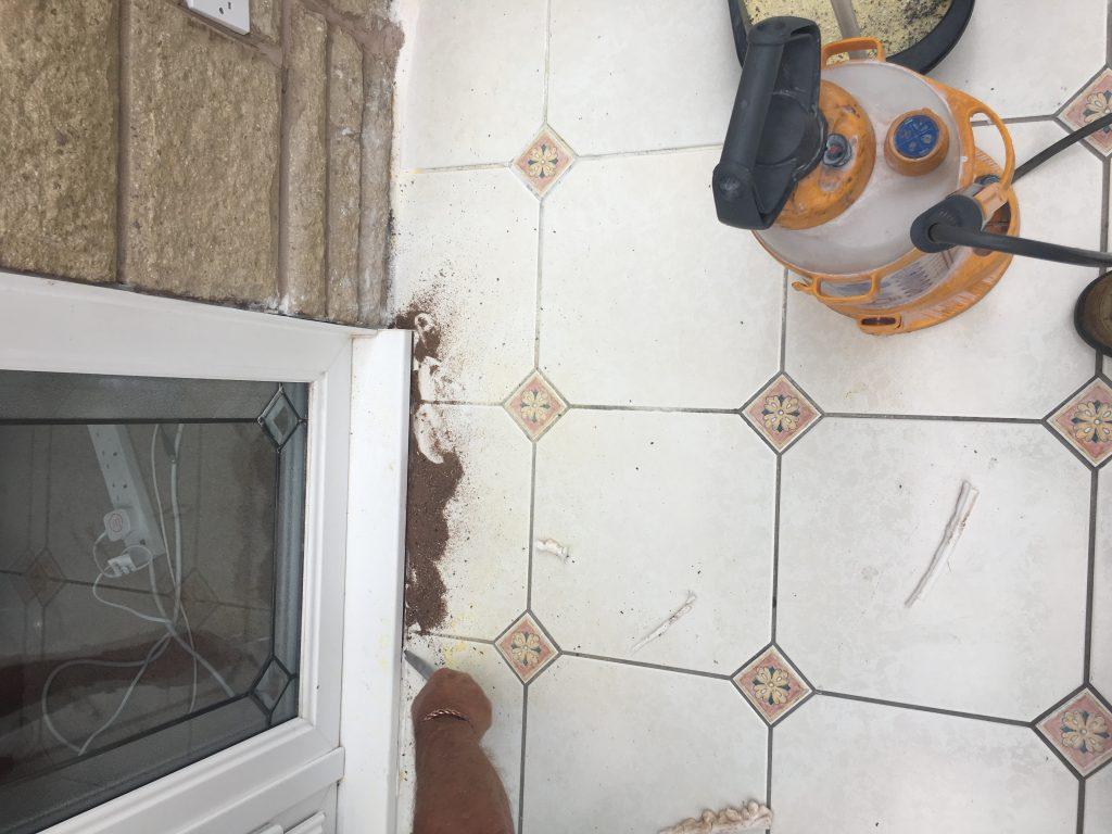 Ants Under Door Sill Pest Control LiverpoolAnts Under Door Sill Pest Control Liverpool